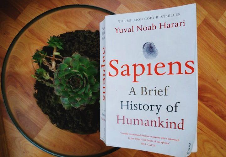 Cartea Care Trebuie Predată în școli – Scurtă Istorie A Omenirii | Yuval Noah Harari